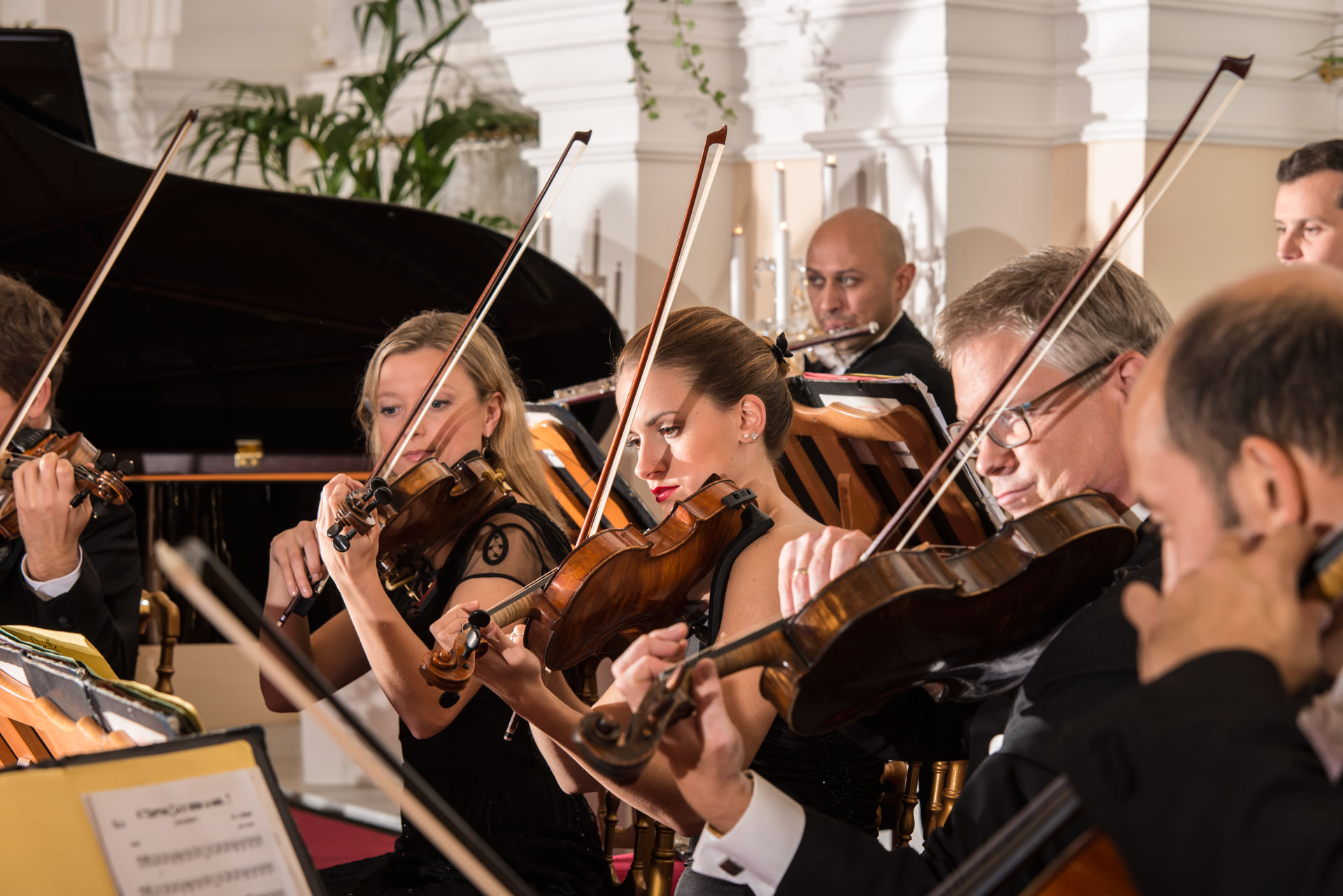 Classical Concerts in Historical Building in the Centre of  Vienna with Optional Dinner